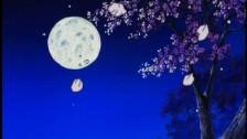アニメ無修正:Tragic silence [海外エロ動画]