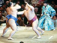 SUMOとは!!世界最強の格闘技である!!