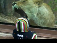 人間の子供を食べたくて食べたくてしょうがないライオン