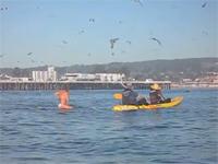 海で女性を撮影していたら奇跡の映像が撮れた動画。突然クジラがどーん!