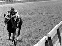 衝撃の31馬身差。全米史上最強クラスの名馬、セクレタリアトの神動画。