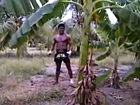元K-1王者のブアカーオさんがバナナの木と闘う動画。なんかシュールだなw