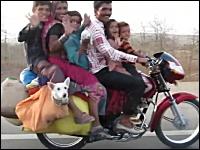 犬がシュールすぎるw一台のバイクに一家6人+2匹!乗りすぎw