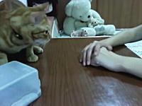 ネコ「あっ。その手があったか。」人は猫の下僕でしかなかったと再認識した