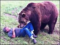ハイイログマでけええ!ぱっとみ食われているように見える巨大熊とヒト