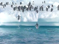 実はスゴい、ペンギンのジャンプ力。氷山に向かって本気で跳ぶペンギンたち。