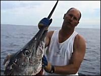 巨大カジキだ!と思ったら釣り上げる寸前にお頭だけになってしまい悲しい。