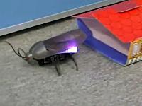 あのゴキブリ型ラジコンがiPad/iPhoneで操作可能に。キモすぎワロタwww
