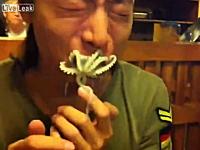食べられまいと最後まで抵抗するタコ。韓国の生タコ踊り食いに挑戦した二人