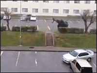 沖縄動画。台風17号に物凄い勢いで吹き飛ばされてしまうワンボックスカー
