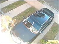 バルコニーから落ちてしまったネコが駐車中の車のフロントガラスを割っちゃう
