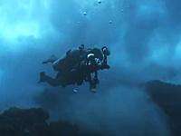 海の中KOEEEE!って動画を見つけてきました。これは怖いどうなった・・・。