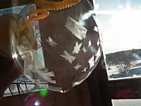 マイナス30度の世界でシャボン玉を膨らませると素敵な事が起こる動画。あら綺麗