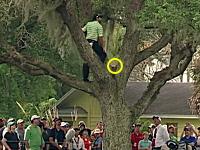 ゴルフでワロタ。信じられない場所でアイアンを握るセルヒオ・ガルシア。PGAツアー
