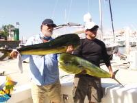 さか船の上で奪われるとは・・・。でっかいシイラを釣ってきたぜと記念撮影していると。