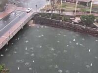 どぼーん!どぼーん!空から特大の雹がふってきて川にどぼーん!ってなってる