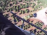 やっぱりうめえ!クリスマスツリー業者のパイロット視点のYouTubeがあった。