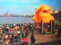 台湾の港で巨大アヒルちゃん死亡の瞬間が激撮される(´・_・`)これは悲しい。