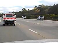 オーストラリアの高速道路では鳩が走っている事もある!?動画。90km/hの鳩。