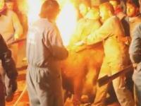 スペインでは闘牛の角に火を付けるイベントがあるらしい動画。虐待か伝統か。