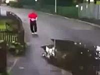 ワロタww2連続で水溜り攻撃をくらってしまった人。日本だと道路交通法違反。