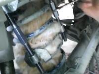 自動車のコイルスプリングの中で身動きが取れなくなっていた猫を救出