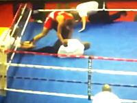 ボクシングでRSC負けした選手が審判を右フックで倒しMMAスタイルでフルボッコに。