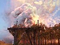 イタリアの花火大会で事故。用意した花火が一斉に発射され爆発してしまう。