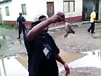 道端で捕まえた大きなカエルをそのまま食べてしまう男。ベア・グリルスより生い