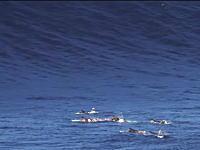 おいちょっと待てこれはデカすぎる。ヤバすぎる巨大波に遭遇したサーファーたち