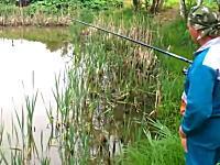 待ち伏せしていたニャンコwそれに驚いて焦りまくる釣り人wネコの勝利w