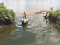 知らずに入ったらビックリする入り江。カヌーのおっさんが●●に襲われる動画。