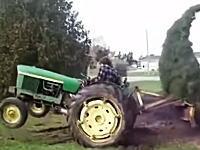 引っこ抜こうとするトラクターに抵抗するツリーw