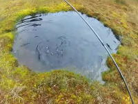 水溜りフライフィッシング。3メートルほどの小さな水溜りでトラウトを釣り上げる動画。