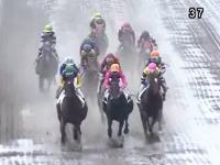 大井競馬の6レースで騎手5人が落馬し3人が病院に運ばれる。踏まれた騎手も。