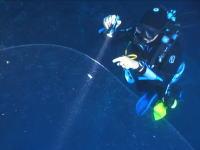 なんだこの生き物!?海の生物の不思議。トルコの海で目撃した巨大で透明な物体。