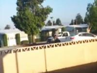 開始1秒ではねられる。路上で喧嘩していたDQNが走ってきた車にはねられてしまう動画。